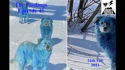 The Findings 45 Wokeness Storms Earthquakes & Blue Dogs 16-2-21