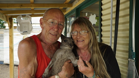 This Aussie Couple Has Turned Their Home Into A Kangaroo Sanctuary