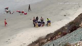 Child attacked by a shark in Encinitas