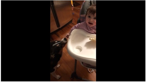 Baby shares treats with her doggy pal