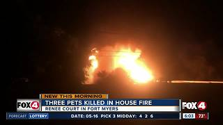 Three pets killed in  Fort Myers house fire - Video