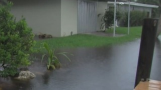 People concerned about heavy rain and high tides - Video