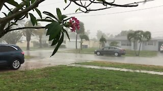 Heavy rain, gusty winds in Lake Park area of Palm Beach County