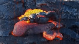 Lava From Hawaii's Kilauea Volcano Gushes Into Sea - Video
