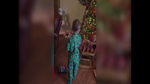 Kid has Cutest Reaction to Christmas Gift