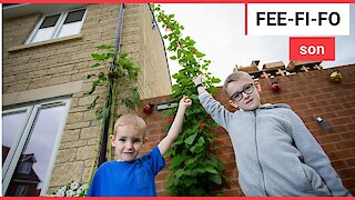Schoolboy has grown a beanstalk to a massive 15FT