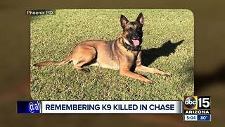 Remembering Phoenix police K-9 Bane killed in the line of duty - Video
