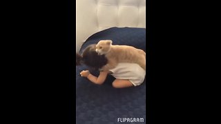 Kitten loves to play with baby girl - Video