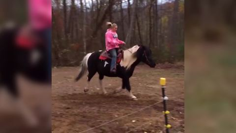 Woman Rides A Beautiful Horse Outdoors