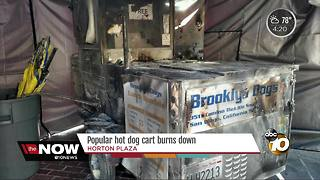 Popular hot dog cart burns down - Video