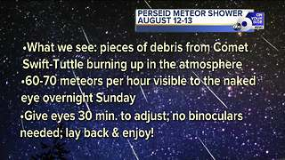 How and when to catch the Perseid meteor shower this weekend - Video