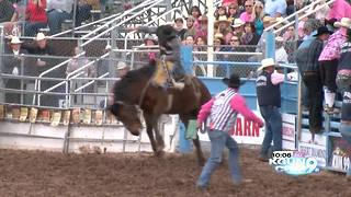 Dedicated rodeo families talk lifestyle, Tucson Rodeo - Video