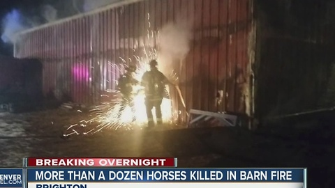 16 horses killed in barn fire on Powhaton Road in Brighton