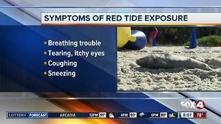 Beach hazard warning for red tide in Southwest Florida - Video