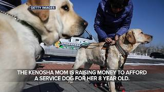 Kenosha mother hopes service dog will keep her son alive - Video