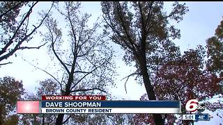 Indiana forestry group, local scientists oppose Brown County forest logging - Video
