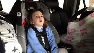 18 Adorable Backseat Babies - Video