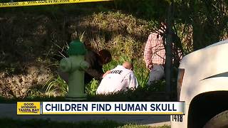 Children discover human remains in Sarasota - Video