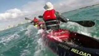 Whales Spotted by Kayakers on the Sunshine Coast - Video