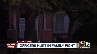 PD: 4 Goodyear officers injured responding to family fight - Video