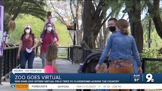 Reid Park Zoo offers virtual field trips for students