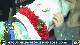 Baltimore group aims to help people find lost pets - Video