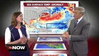 Geeking Out: Sea surface temperatures - Video
