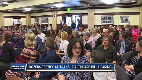 Several dozen Idahoans testify against bill that would outlaw trans youth healthcare