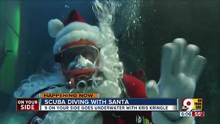 Scuba diving with Santa at the Newport Aquarium - Video