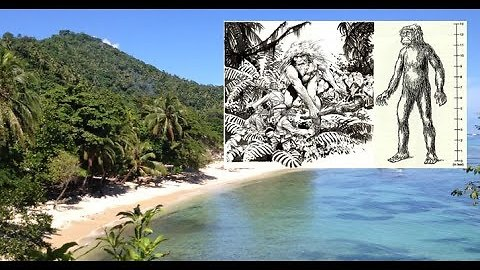Do Giants Still Exist On The Solomon Islands?- August 15, 2017