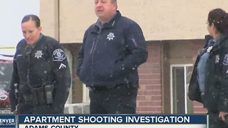 Apartment shooting investigation in Adams County - Video