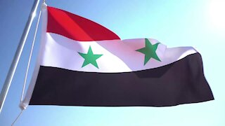 WATCH: Syria voices solidarity with China in fighting new coronavirus (PwU)