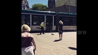 UK community officer helps family of ducks across city centre tramlines - Video