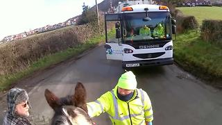 Friendly waste collector offers carrot to frightened horse