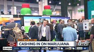 Non-marijuana businesses finding success in pot - Video