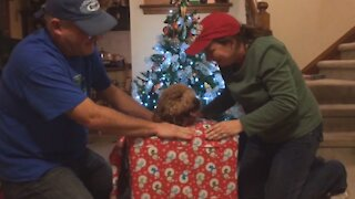 Wrapping Presents Fails