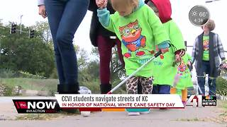 Blind students raise awareness on national white cane safety day - Video