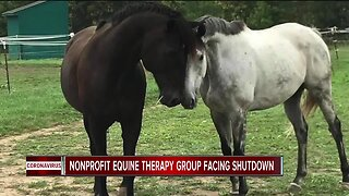 Nonprofit equine therapy group facing shutdown