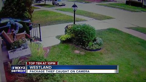 Package thief caught on camera in Westland
