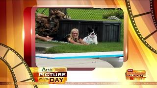 Art's Cameras Plus Picture of the Day for 8/24! - Video