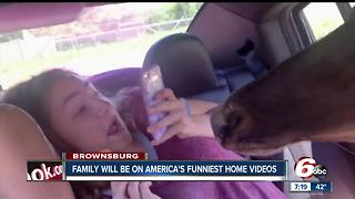 Brownsburg family will be on America's Funniest Home Videos on Sunday - Video