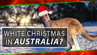 The Calendar, Australia & White Christmas - Video