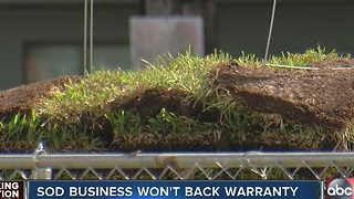 Sod business won't back warranty - Video