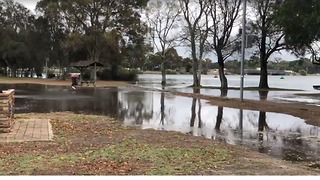 High Tide Causes Sydney River to Overflow - Video