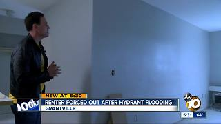 Navy sailor forced out of apartment after hydrant flooding - Video