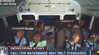 Call for nationwide seat belt standards - Video