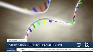 In-Depth: Study suggests COVID-19 can alter DNA