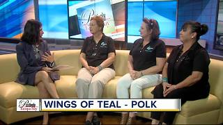 Positively Tampa Bay: Wings of Teal - Video