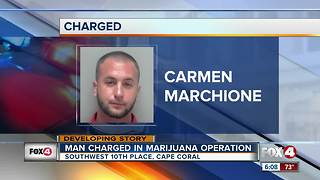 Man Charged in Marijuana Operation - Video