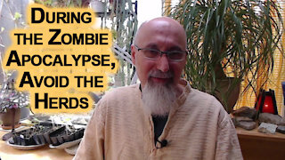 During the Zombie Apocalypse, Avoid the Herds: Mandating Vaccines on Humanity